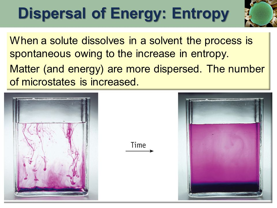 When a solute dissolves in a solvent the process is spontaneous owing to the increase in entropy.