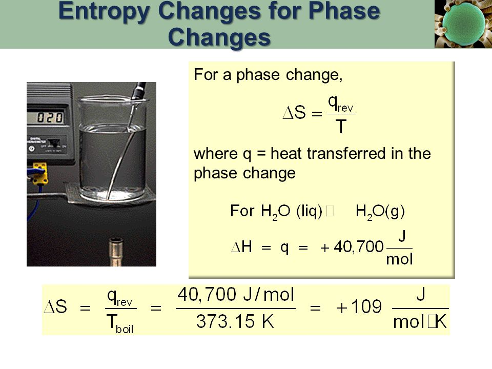 For a phase change, where q = heat transferred in the phase change Entropy Changes for Phase Changes