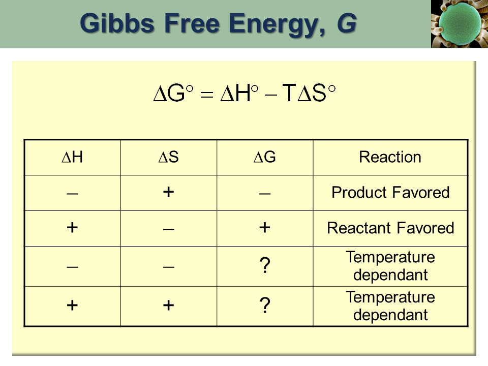HH SS GG Reaction  +  Product Favored +  + Reactant Favored  ? Temperature dependant ++? Gibbs Free Energy, G