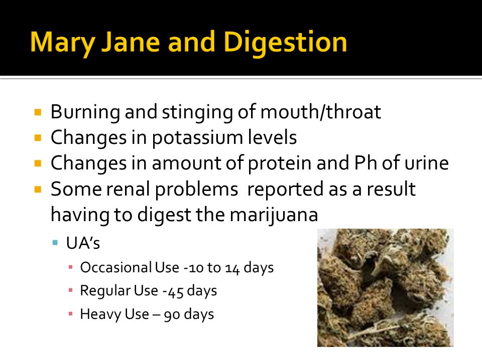  Burning and stinging of mouth/throat  Changes in potassium levels  Changes in amount of protein and Ph of urine  Some renal problems reported as a result having to digest the marijuana  UA's ▪ Occasional Use -10 to 14 days ▪ Regular Use -45 days ▪ Heavy Use – 90 days
