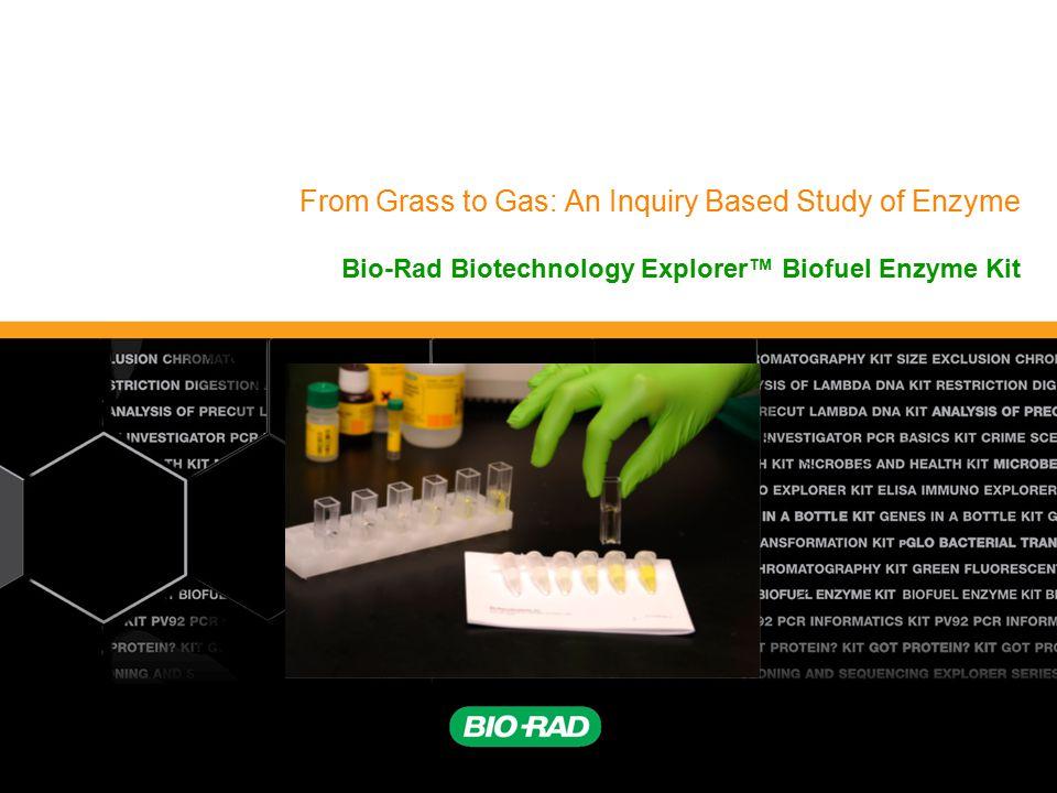 Biotechnology Explorer™   explorer.bio-rad.com 12 How can this enzymatic reaction be easily quantified.