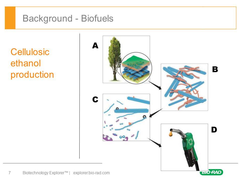 Biotechnology Explorer™   explorer.bio-rad.com 18 Initial reaction rate = Amount of p-nitrophenol produced (nmol) Time (min) Initial reaction rate = 50 nmol - 0 nmol 4 min - 0 min = 12.5 nmol/min 1.Std curve / Std Reaction Rate 2.Effect of Temperature 3.Effect of pH 4.Effect of Enzyme Concentration 5.Effect of Substrate Concentration 6.Bio-prospecting for Celliobiase Biofuel Enzyme kit Activities