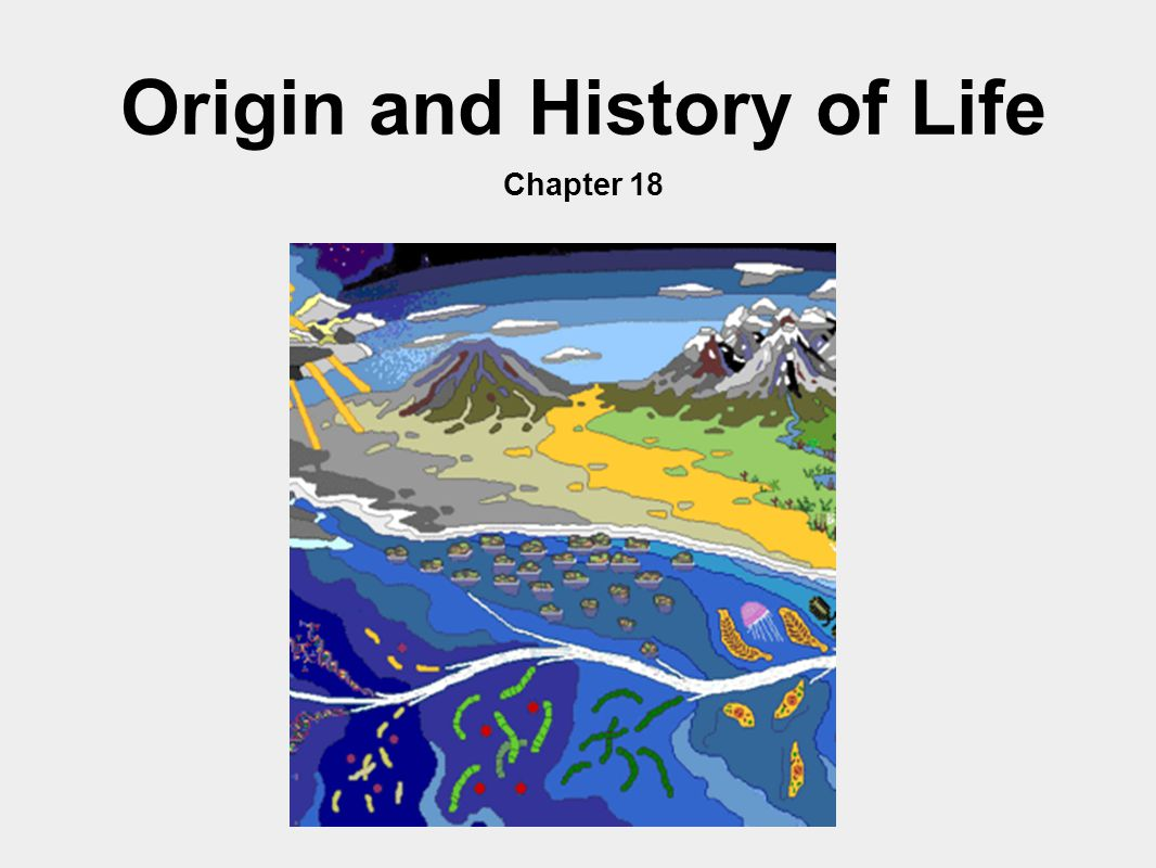Origin and History of Life Chapter 18