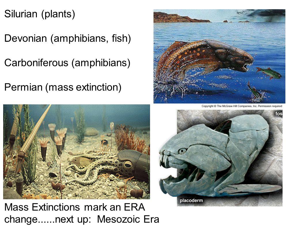 Silurian (plants) Devonian (amphibians, fish) Carboniferous (amphibians) Permian (mass extinction) Mass Extinctions mark an ERA change......next up: Mesozoic Era