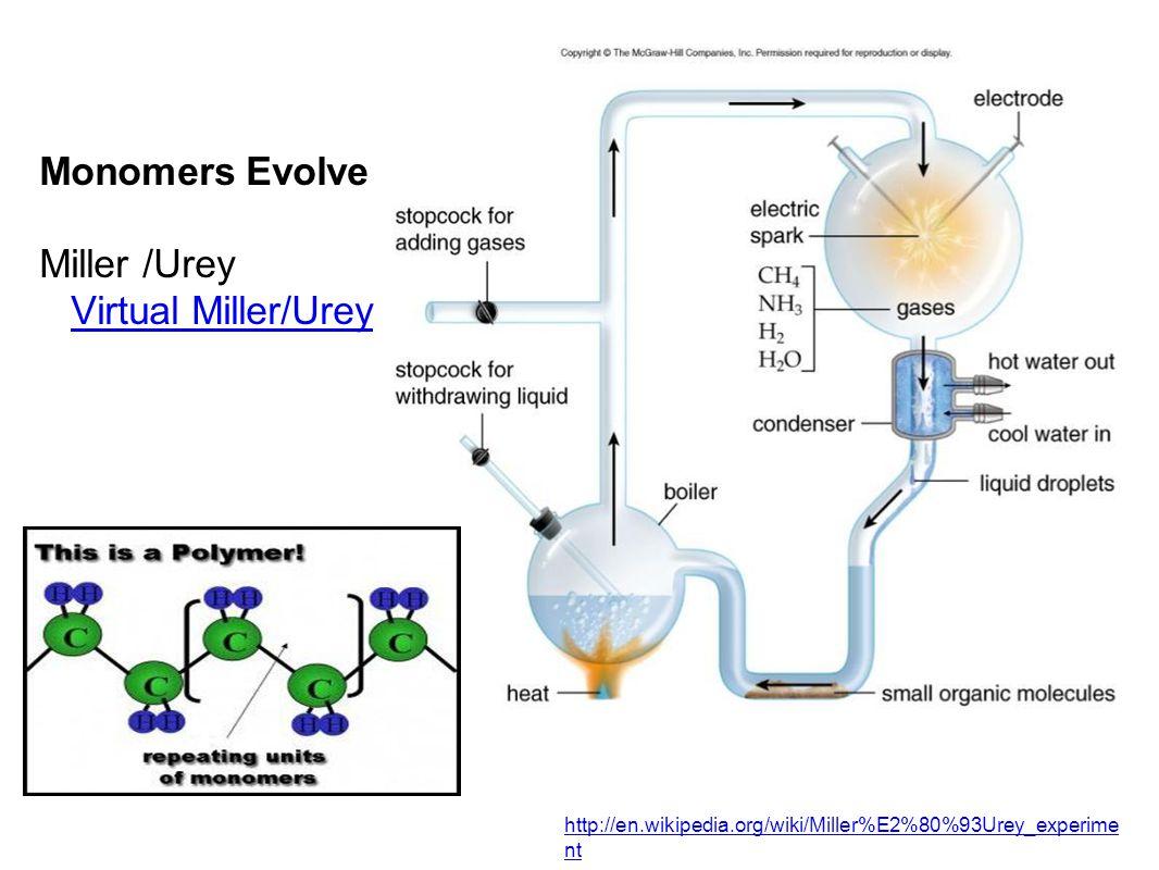 Monomers Evolve Miller /Urey Virtual Miller/UreyVirtual Miller/Urey http://en.wikipedia.org/wiki/Miller%E2%80%93Urey_experime nt