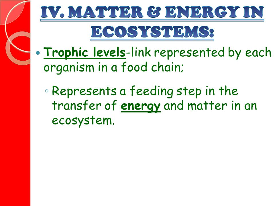 Trophic levels-link represented by each organism in a food chain; ◦ Represents a feeding step in the transfer of energy and matter in an ecosystem.