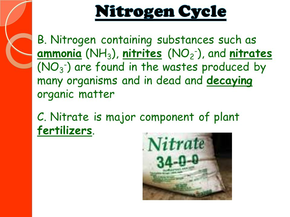 B. Nitrogen containing substances such as ammonia (NH 3 ), nitrites (NO 2 - ), and nitrates (NO 3 - ) are found in the wastes produced by many organis