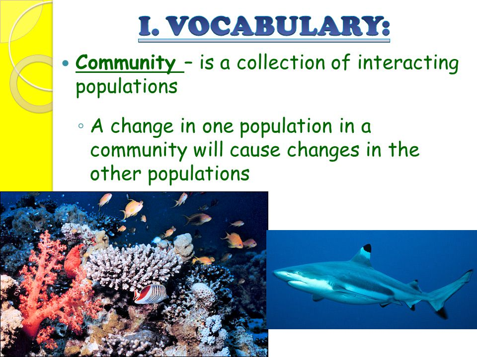 Community – is a collection of interacting populations ◦ A change in one population in a community will cause changes in the other populations