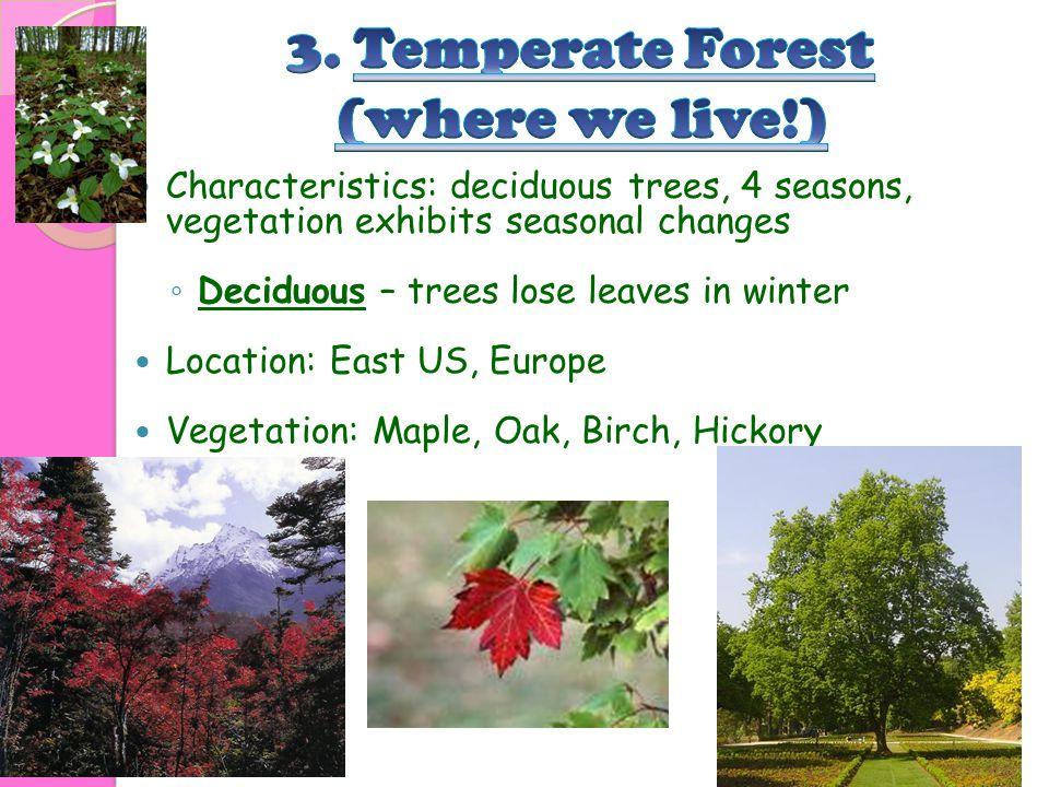 Characteristics: deciduous trees, 4 seasons, vegetation exhibits seasonal changes ◦ Deciduous – trees lose leaves in winter Location: East US, Europe