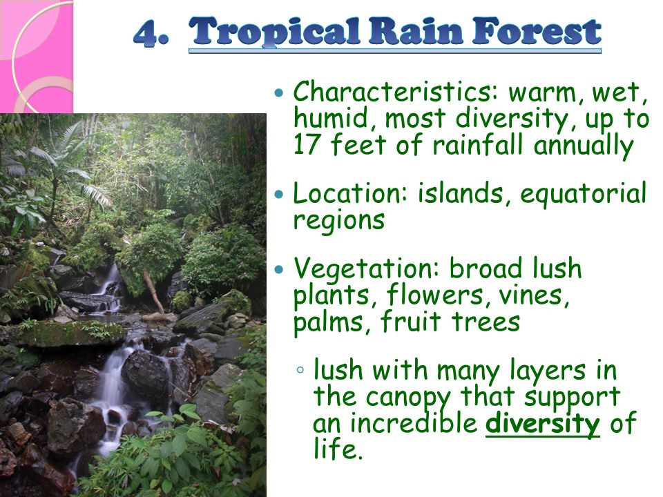 Characteristics: warm, wet, humid, most diversity, up to 17 feet of rainfall annually Location: islands, equatorial regions Vegetation: broad lush pla