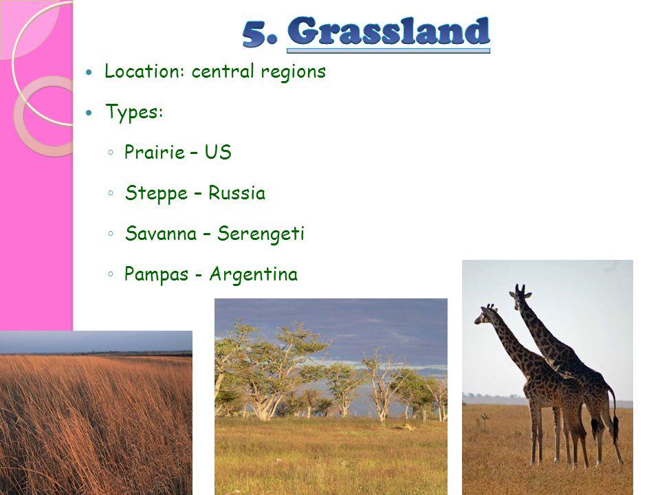 Location: central regions Types: ◦ Prairie – US ◦ Steppe – Russia ◦ Savanna – Serengeti ◦ Pampas - Argentina