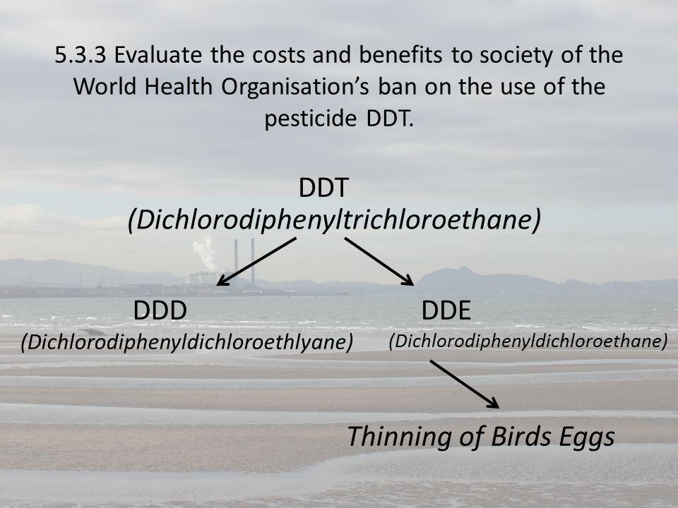 DDT (Dichlorodiphenyltrichloroethane) DDDDDE (Dichlorodiphenyldichloroethlyane) (Dichlorodiphenyldichloroethane) Thinning of Birds Eggs