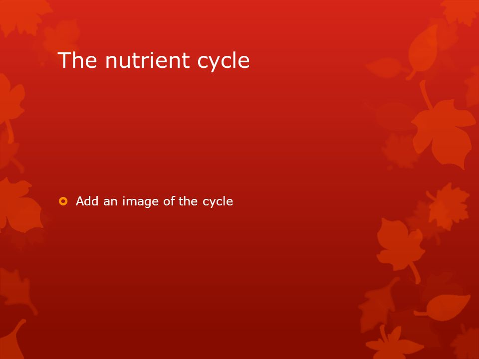 The nutrient cycle  Add an image of the cycle