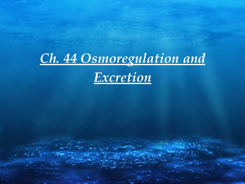 44.1 Osmoregulation Cells balance water gain and loss through osmoregulation, a process based on the controlled movement of solutes between internal fluids and the external environment and on the movement of water, which follows by osmosis.