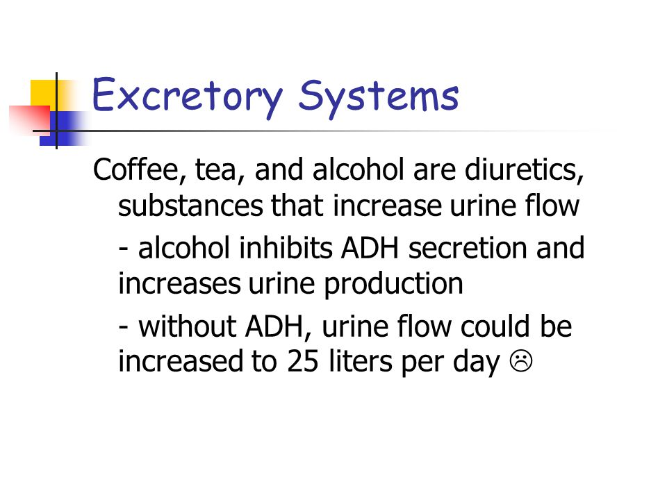 Excretory Systems Coffee, tea, and alcohol are diuretics, substances that increase urine flow - alcohol inhibits ADH secretion and increases urine pro