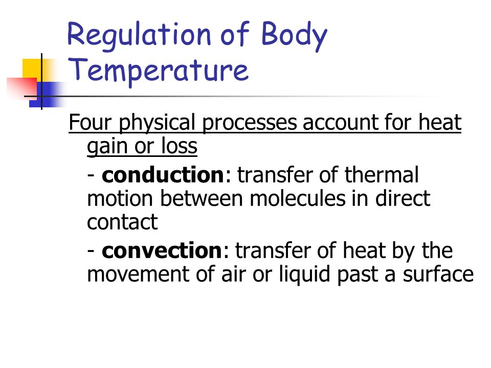 Regulation of Body Temperature Four physical processes account for heat gain or loss - conduction: transfer of thermal motion between molecules in dir