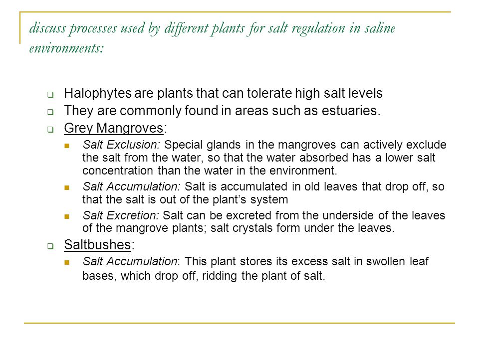 discuss processes used by different plants for salt regulation in saline environments:  Halophytes are plants that can tolerate high salt levels  Th