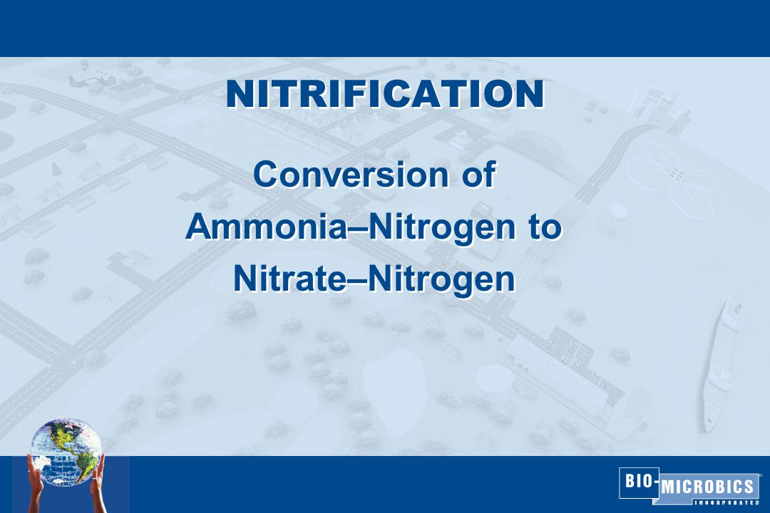 NITRIFICATION Conversion of Ammonia–Nitrogen to Nitrate–Nitrogen Conversion of Ammonia–Nitrogen to Nitrate–Nitrogen