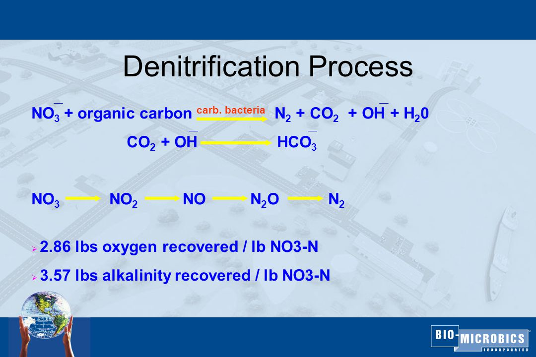 Denitrification Process NO 3 + organic carbon carb.