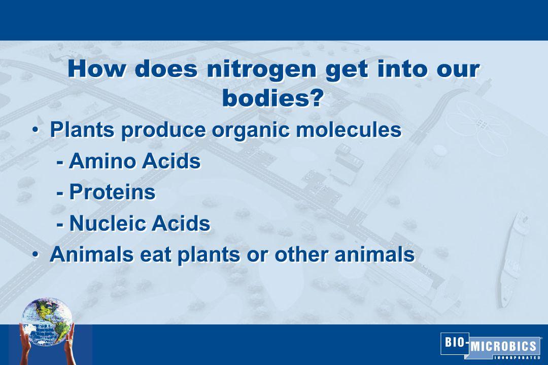 Nitrification Process Step 1: NH + 4 + 1.5 O 2 Nitrosomonas NO 2 + 2H + + H 2 O Step 2: NO 2 + 0.5 O 2 Nirtrobacter NO 3 Overall Reaction: NH + 4 + 2 O 2 NO 3 + 2H + + H 2 O  4.6 lbs O2/lb NH3-N  7.14 lbs alkalinity destroyed/lb NH3-N