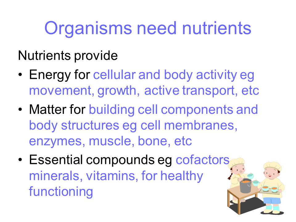 Organisms need nutrients Nutrients provide Energy for cellular and body activity eg movement, growth, active transport, etc Matter for building cell components and body structures eg cell membranes, enzymes, muscle, bone, etc Essential compounds eg cofactors, minerals, vitamins, for healthy functioning