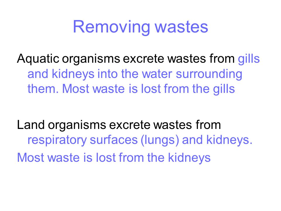 Removing wastes Aquatic organisms excrete wastes from gills and kidneys into the water surrounding them.