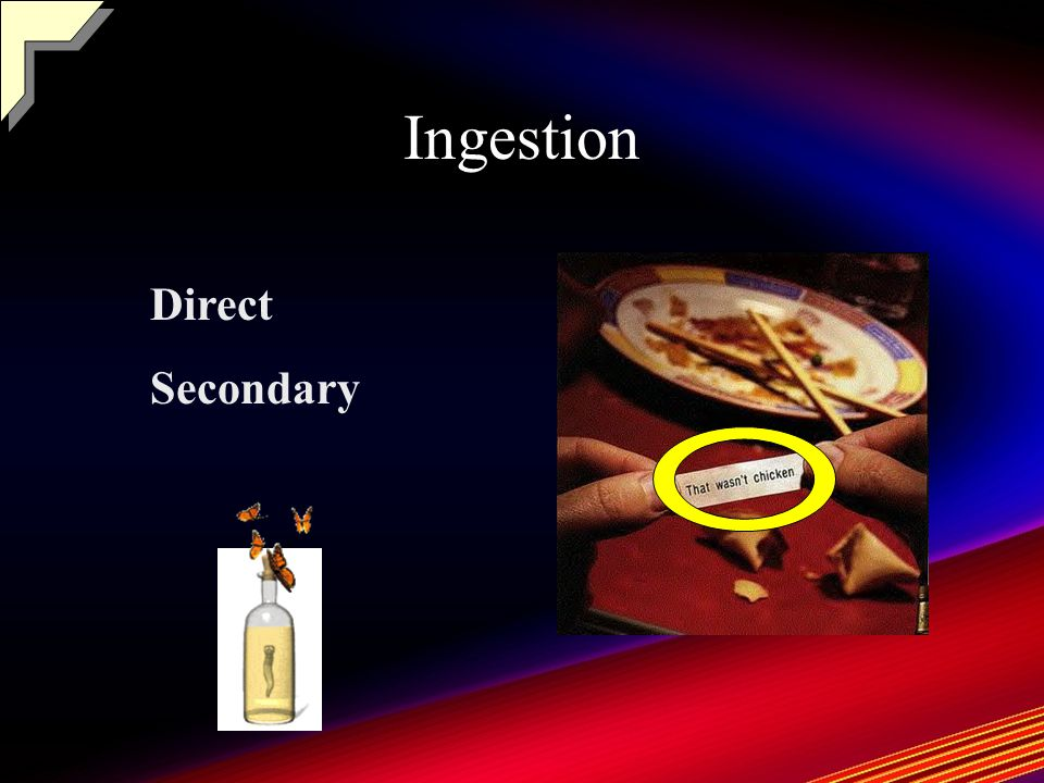 Ingestion Direct Secondary
