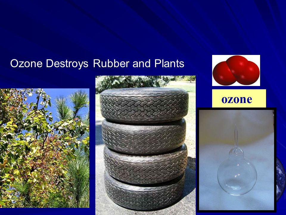 ozone Ozone Destroys Rubber and Plants