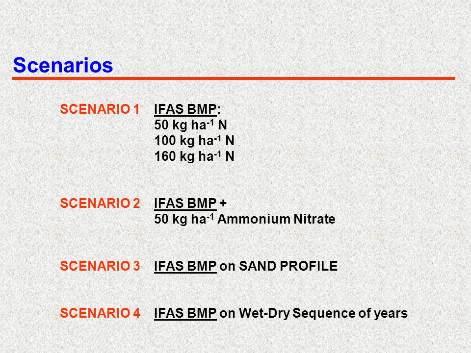 Scenarios SCENARIO 1IFAS BMP: 50 kg ha -1 N 100 kg ha -1 N 160 kg ha -1 N SCENARIO 2IFAS BMP + 50 kg ha -1 Ammonium Nitrate SCENARIO 3IFAS BMP on SAND PROFILE SCENARIO 4IFAS BMP on Wet-Dry Sequence of years