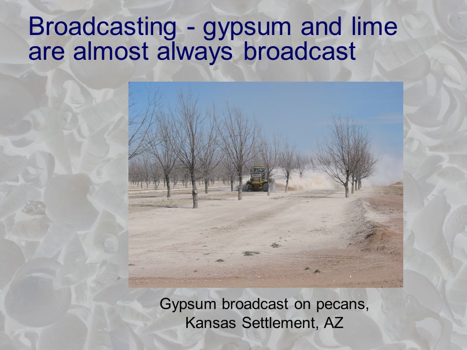 Broadcasting - gypsum and lime are almost always broadcast Gypsum broadcast on pecans, Kansas Settlement, AZ