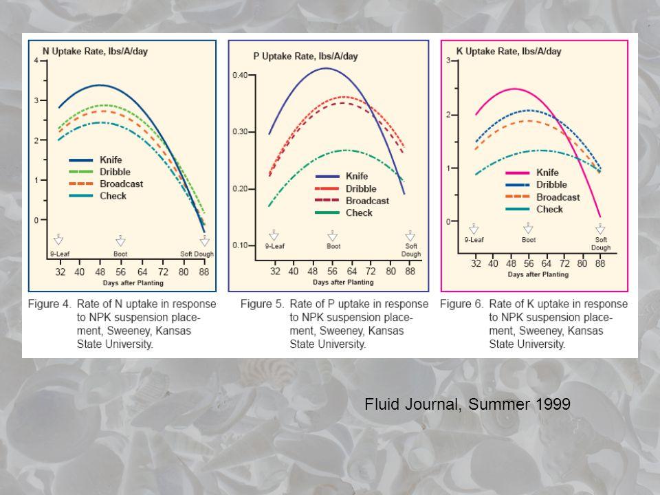 Fluid Journal, Summer 1999