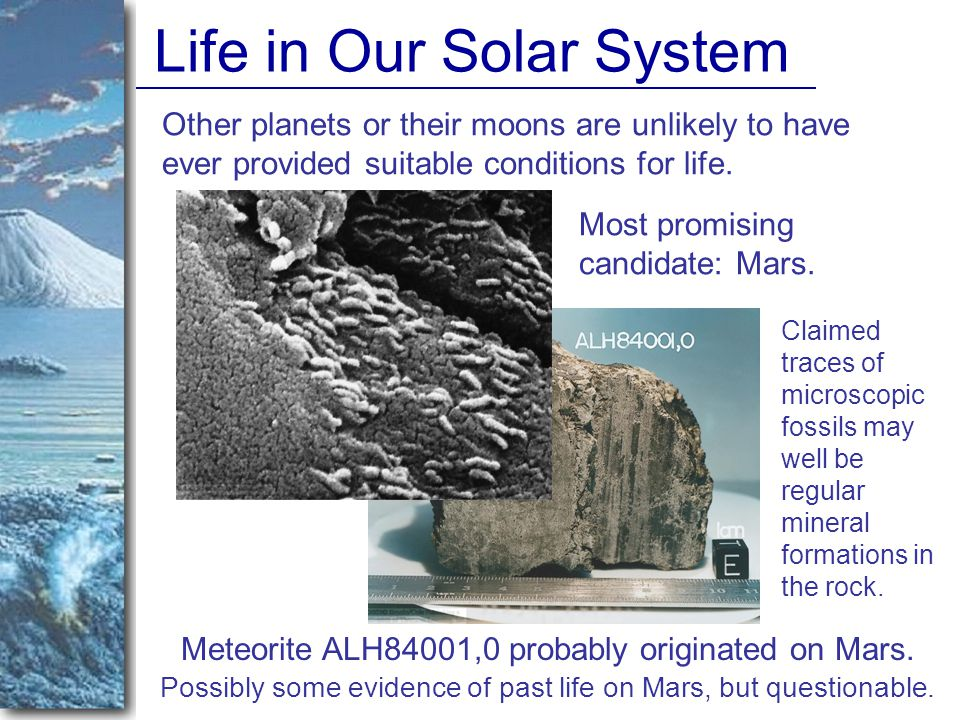 Life in Our Solar System Other planets or their moons are unlikely to have ever provided suitable conditions for life.