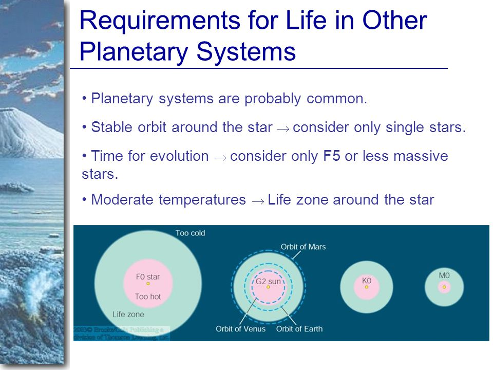 Requirements for Life in Other Planetary Systems Planetary systems are probably common.