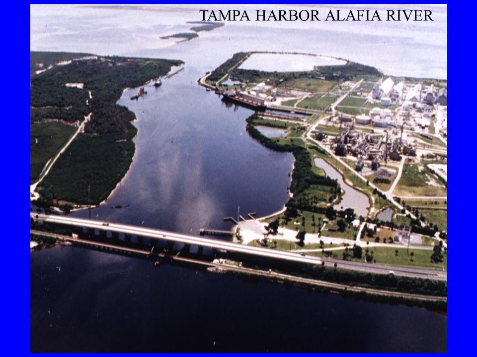 TAMPA HARBOR ALAFIA RIVER