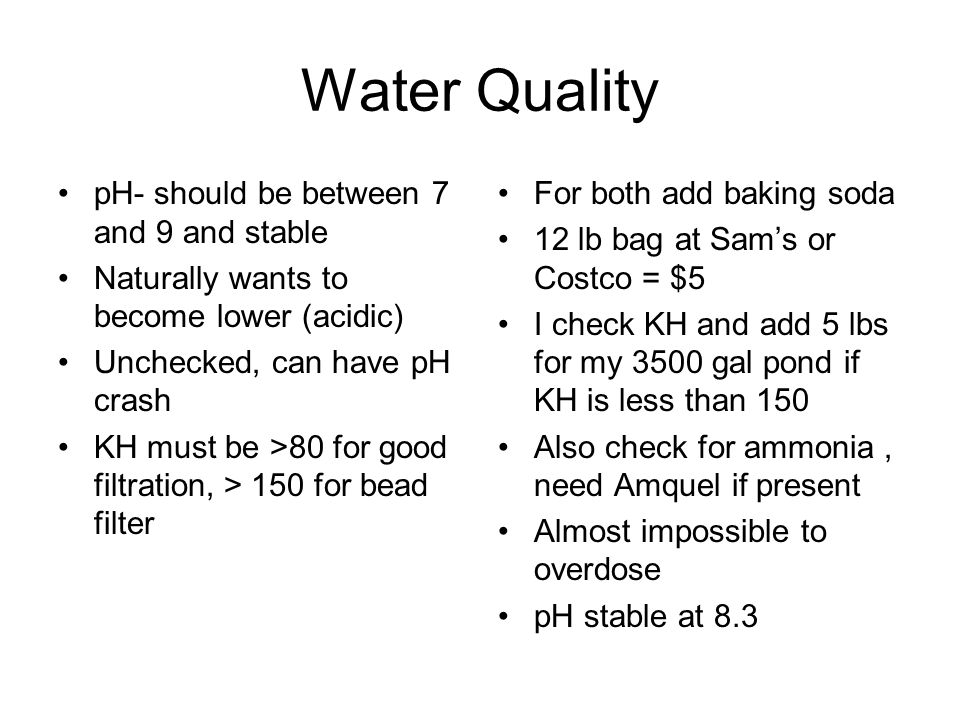 Water Quality pH- should be between 7 and 9 and stable Naturally wants to become lower (acidic) Unchecked, can have pH crash KH must be >80 for good f