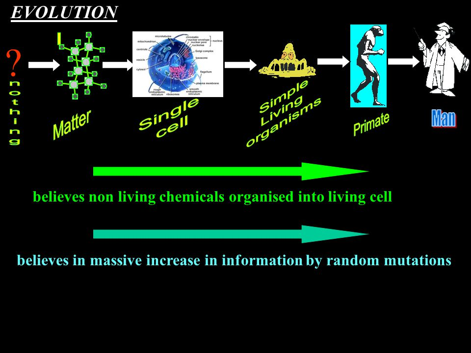 ? believes in massive increase in information by random mutations believes non living chemicals organised into living cell EVOLUTION