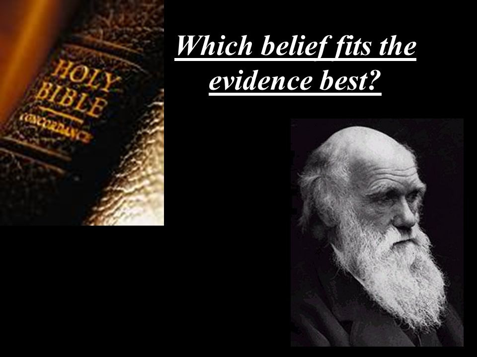 Which belief fits the evidence best?