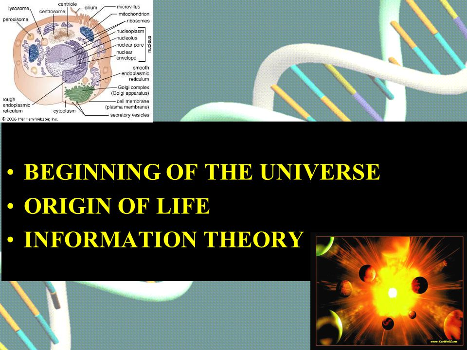 BEGINNING OF THE UNIVERSE ORIGIN OF LIFE INFORMATION THEORY