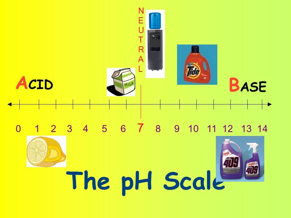 0 1 2 3 4 5 6 7 8 9 10 11 12 13 14 A CID B ASE NEUTRALNEUTRAL The pH Scale
