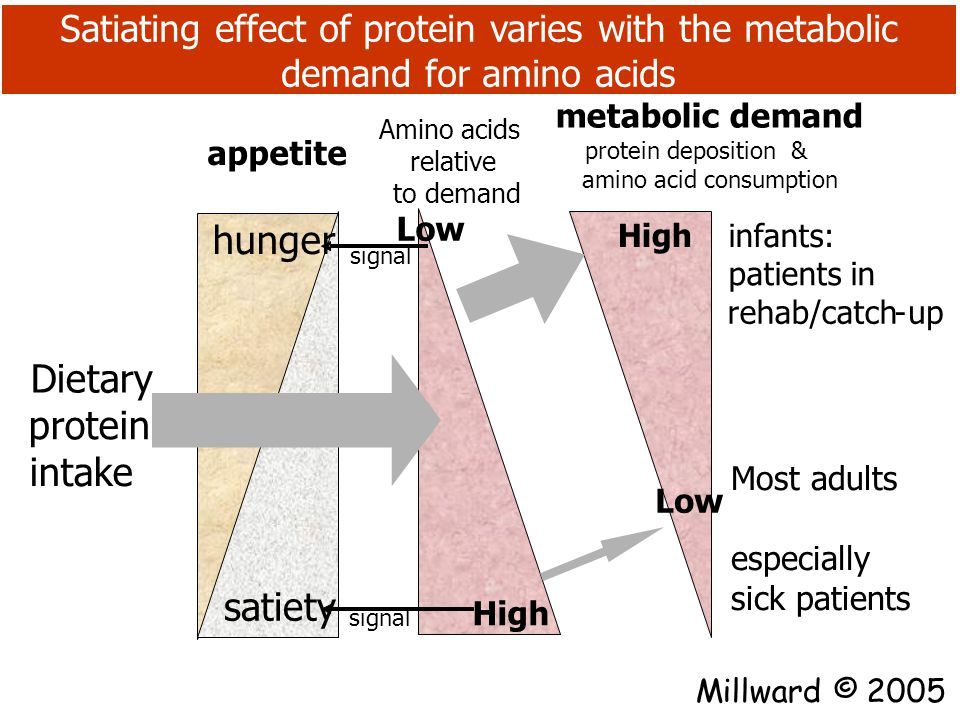Protein and appetite in the clinical environment: Protein depletion and repletion appears to regulate appetite during catch-up growth Days Body weight (kg) 020406080100120140160180200220240260280 4 6 8 10 12 14 expected weight-for height normal growth catch-up Wasting Catch-up growth (nutritional rehab) Increased Hunger stimulated: low satiating effect of dietary protein appetite Normal satiety stimulated: High satiating effect of dietary protein Millward D.J.