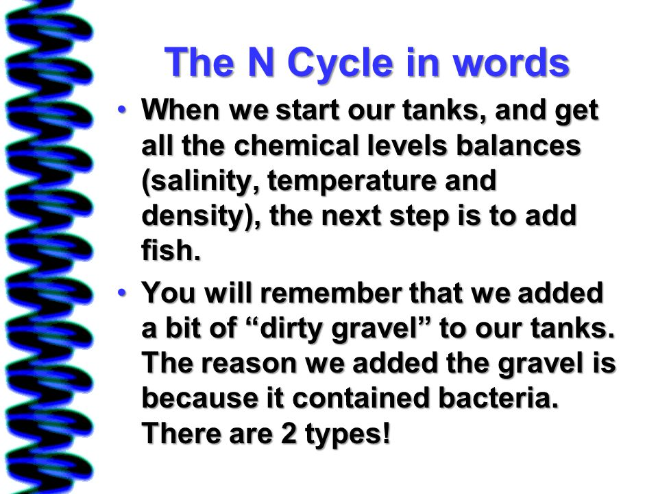 The N Cycle in words When we start our tanks, and get all the chemical levels balances (salinity, temperature and density), the next step is to add fish.When we start our tanks, and get all the chemical levels balances (salinity, temperature and density), the next step is to add fish.