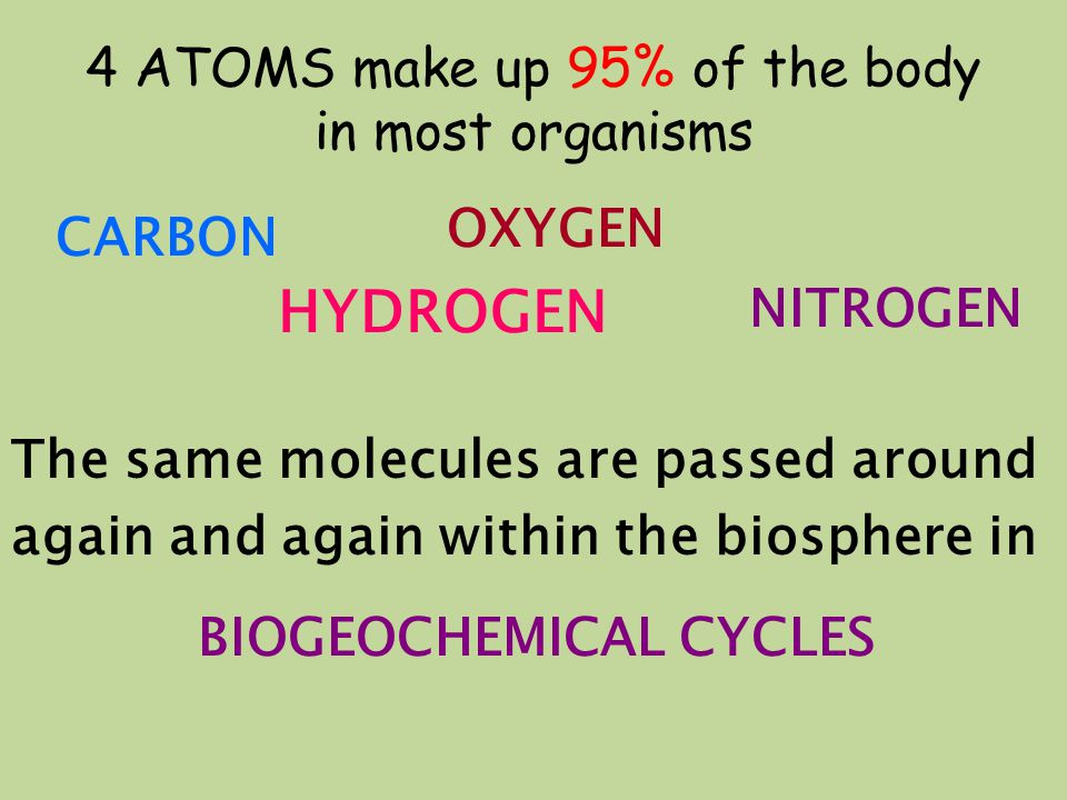 4 ATOMS make up 95% of the body in most organisms CARBON HYDROGEN OXYGEN NITROGEN The same molecules are passed around again and again within the biosphere in BIOGEOCHEMICAL CYCLES