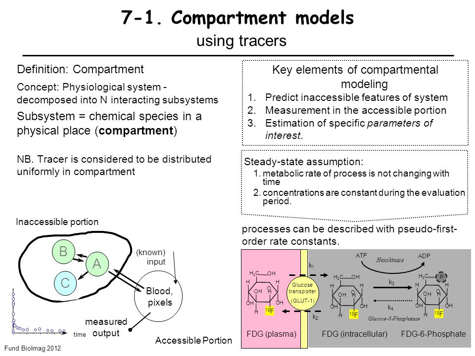 Fund BioImag 2012 7-4 7-1. Compartment models using tracers Definition: Compartment Concept: Physiological system - decomposed into N interacting subs