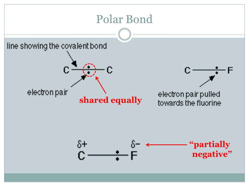 Polar Bond shared equally partially negative