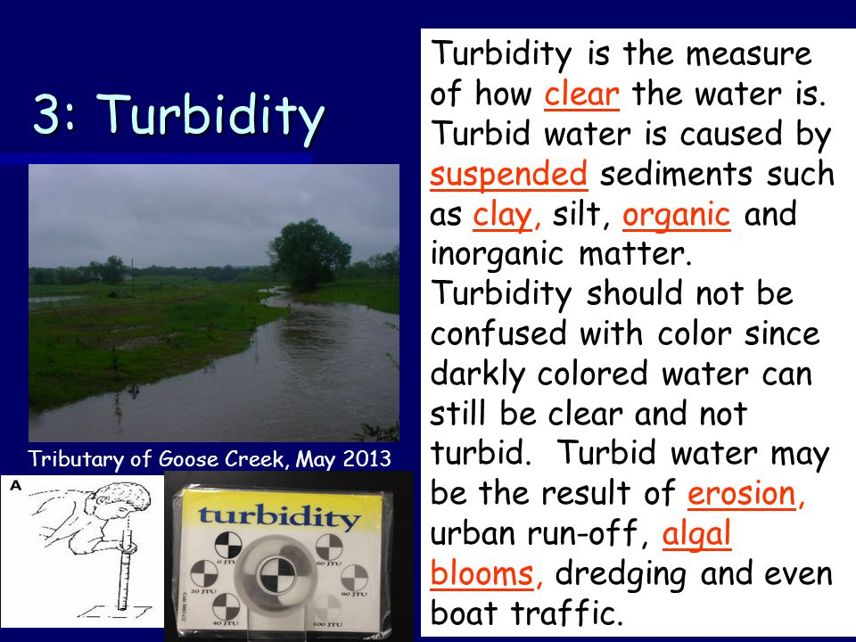 3: Turbidity Turbidity is the measure of how clear the water is.