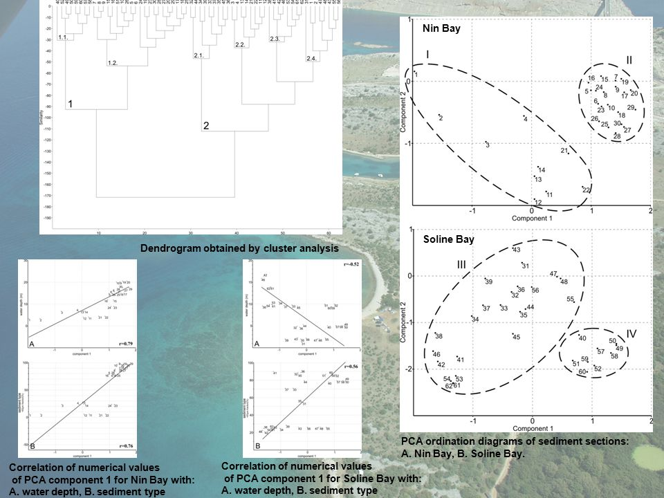 PCA ordination diagrams of sediment sections: A. Nin Bay, B. Soline Bay. Correlation of numerical values of PCA component 1 for Soline Bay with: A. wa