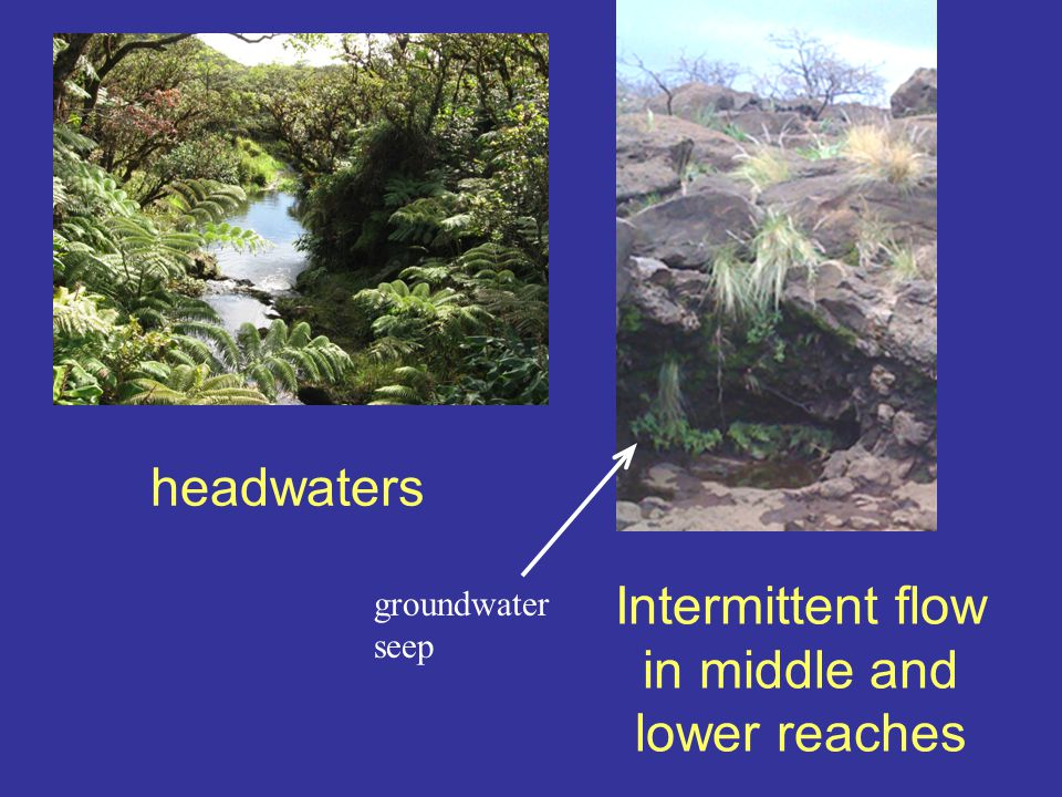 headwaters Intermittent flow in middle and lower reaches groundwater seep