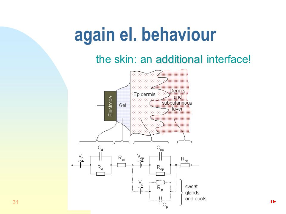 31 again el. behaviour additional the skin: an additional interface!