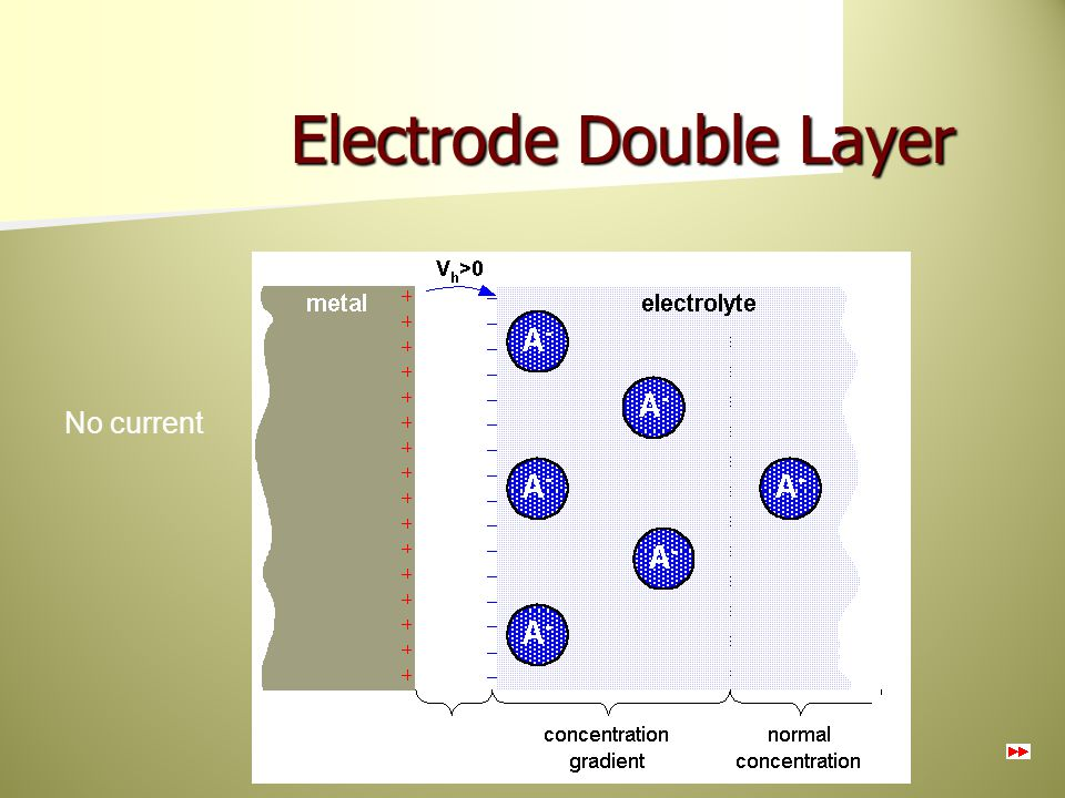 Electrode Double Layer No current Oxidation or reduction reactions at the electrode- electrolyte interface lead to a double-charge layer