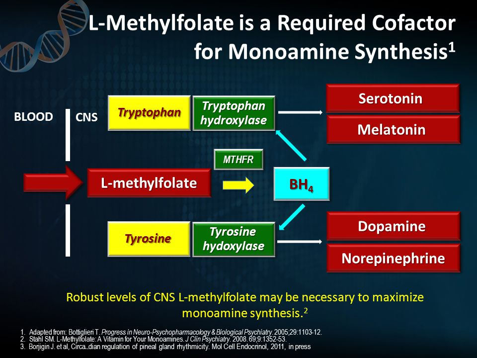 L-Methylfolate is a Required Cofactor for Monoamine Synthesis 1 1.Adapted from: Bottiglieri T.